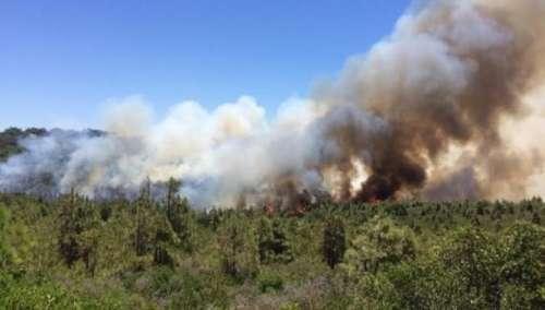 بلاغ رسمي: الناظور و الشرق الأكثر تضررا من الحرائق في المغرب