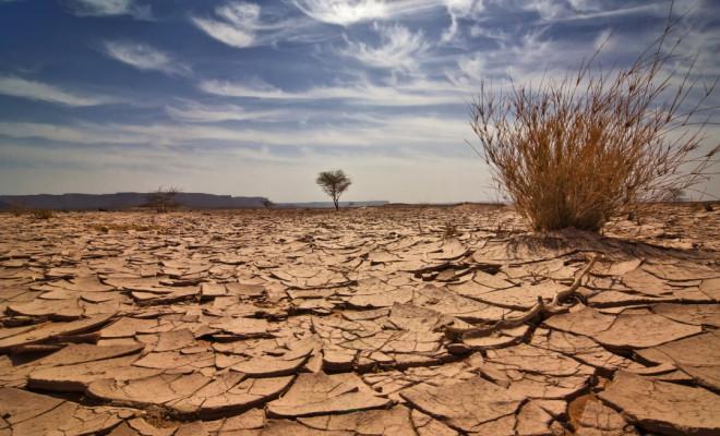 قلة المياه تهدد بهجرة فلاحي سهل صبرة بالناظور لأراضيهم