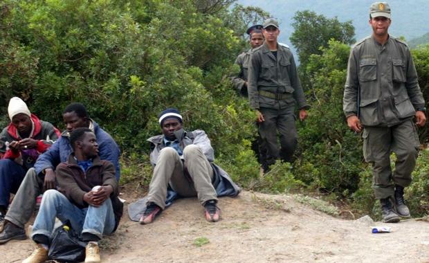 توقيف 118 مهاجراً إفريقياً ضواحي الناظور و حجز سيارتين و كمية من الخمور