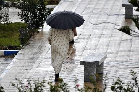 هذه مقاييس التساقطات المطرية المسجلة بالناظور و المملكة خلال 24 ساعة الماضية