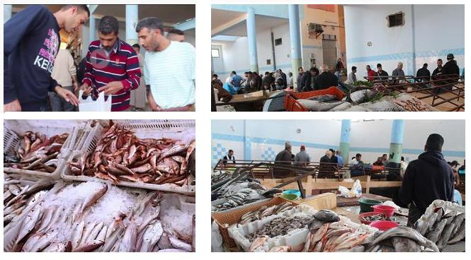 """ربورتاج:أسعار السمك تشتعل بسوق زايو في أولى أيام رمضان ومواطنون يرفعون شعار """"خليه يعوم""""؟؟"""