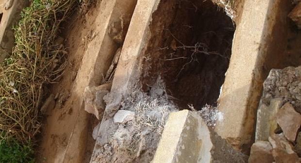 شخص يخرج زوجته من القبر والأمن يتدخل لإيقافه في وجدة