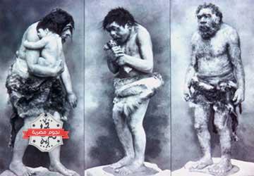 فيديو عجيب: سيدنا آدم ليس أول البشر؟؟