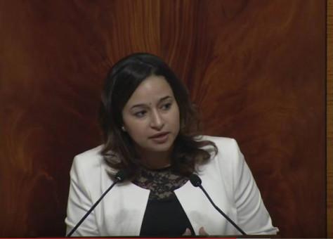 + وثيقة.. برلمانية توجه سؤالا لوزير الداخلية بـ»تيفناغ»