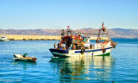 مراكب الصيد الساحلي تستعد لمغادرة ميناء الحسيمة الى الناظور و الدريوش لهذا السبب