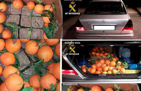 +صورة: احباط محاولة لادخال حشيش مخبأ في البرتقال من الناظور الى مليلية